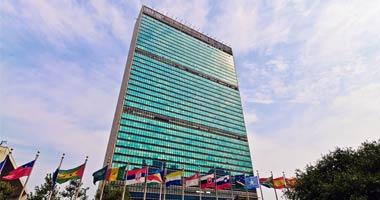 United Nations NGO